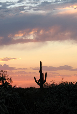 Civano Sunset, Tucson